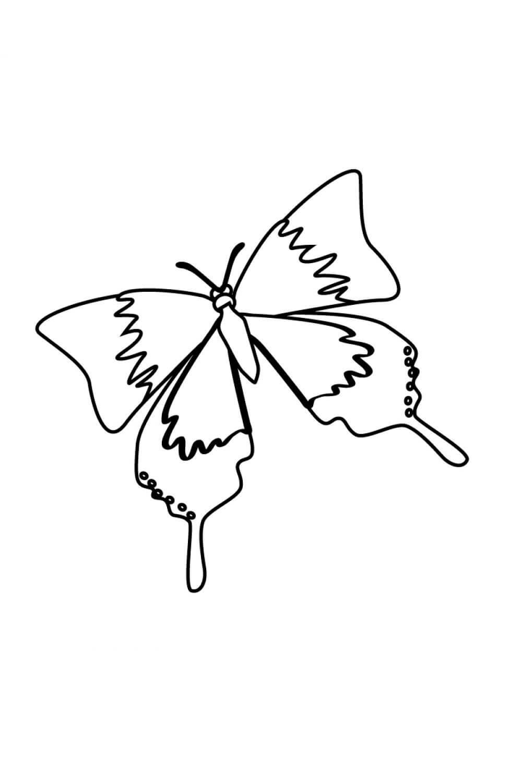 Раскраска Бабочка весной