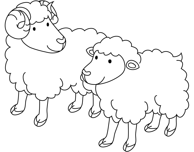 Раскраска Баранчик и овечка