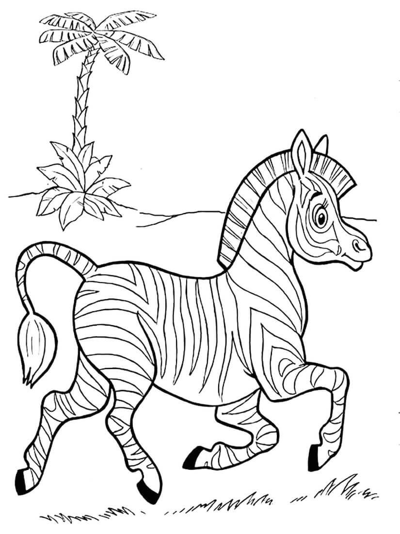 Раскраска Бегущая зебра