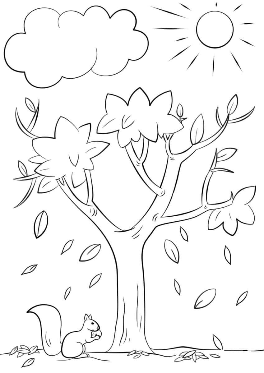 Раскраска Белочка под деревом