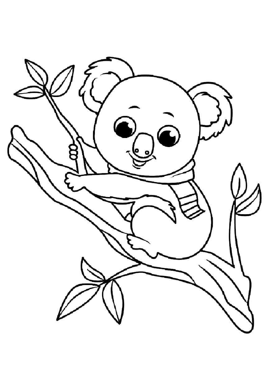 Раскраска Коала на веточке дерева