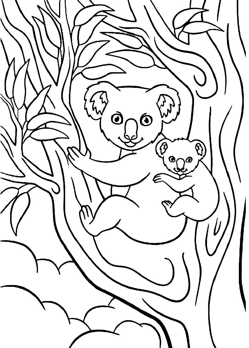 Раскраска Коала с детёнышем на дереве