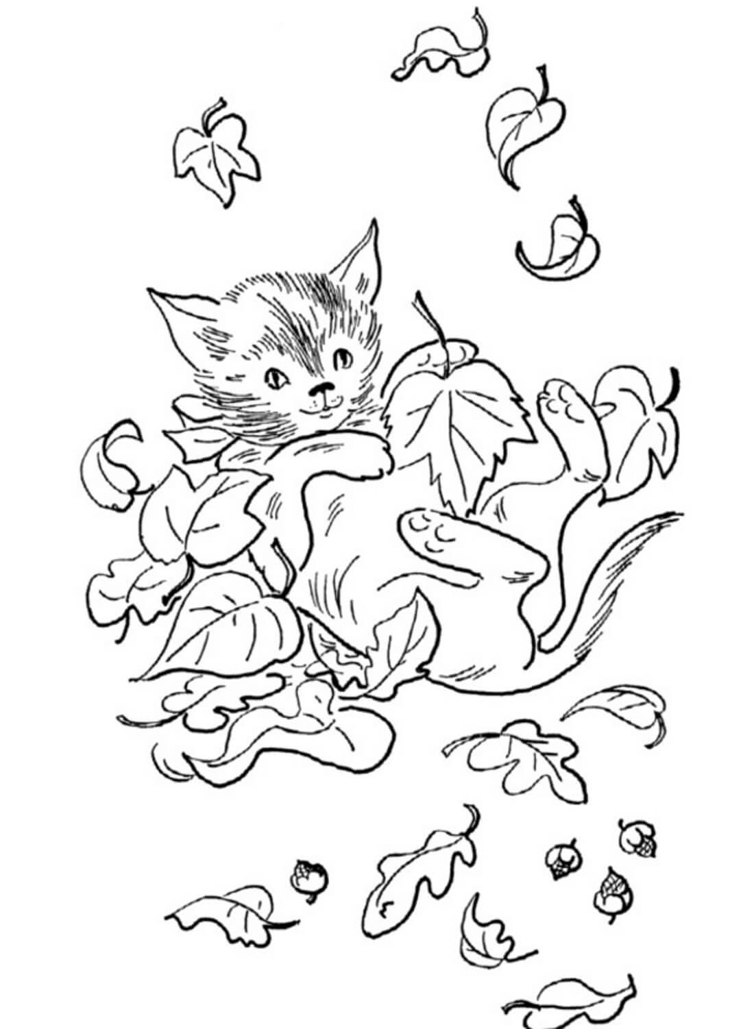 Раскраска Котик в листьях
