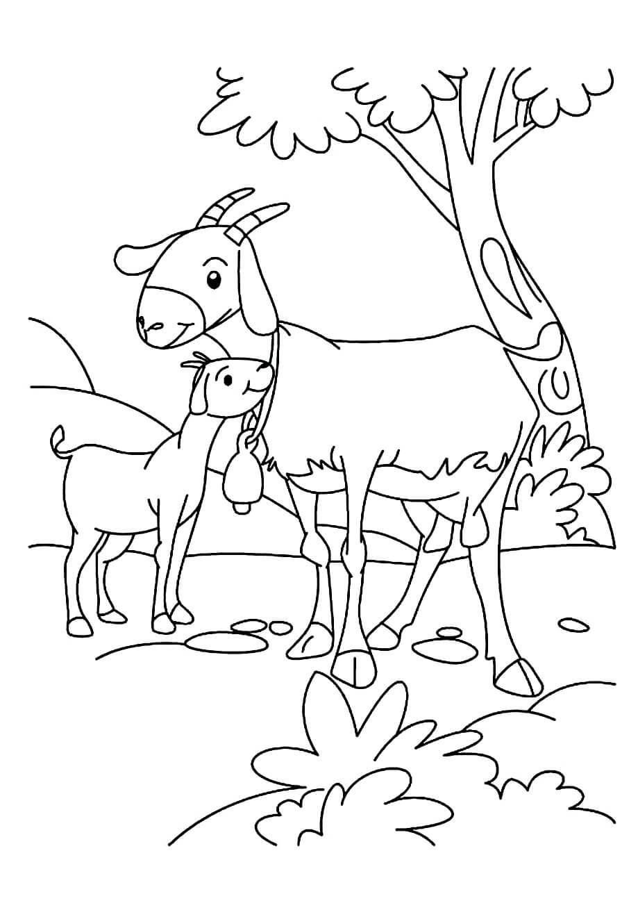 Раскраска Козочка и козлёнок