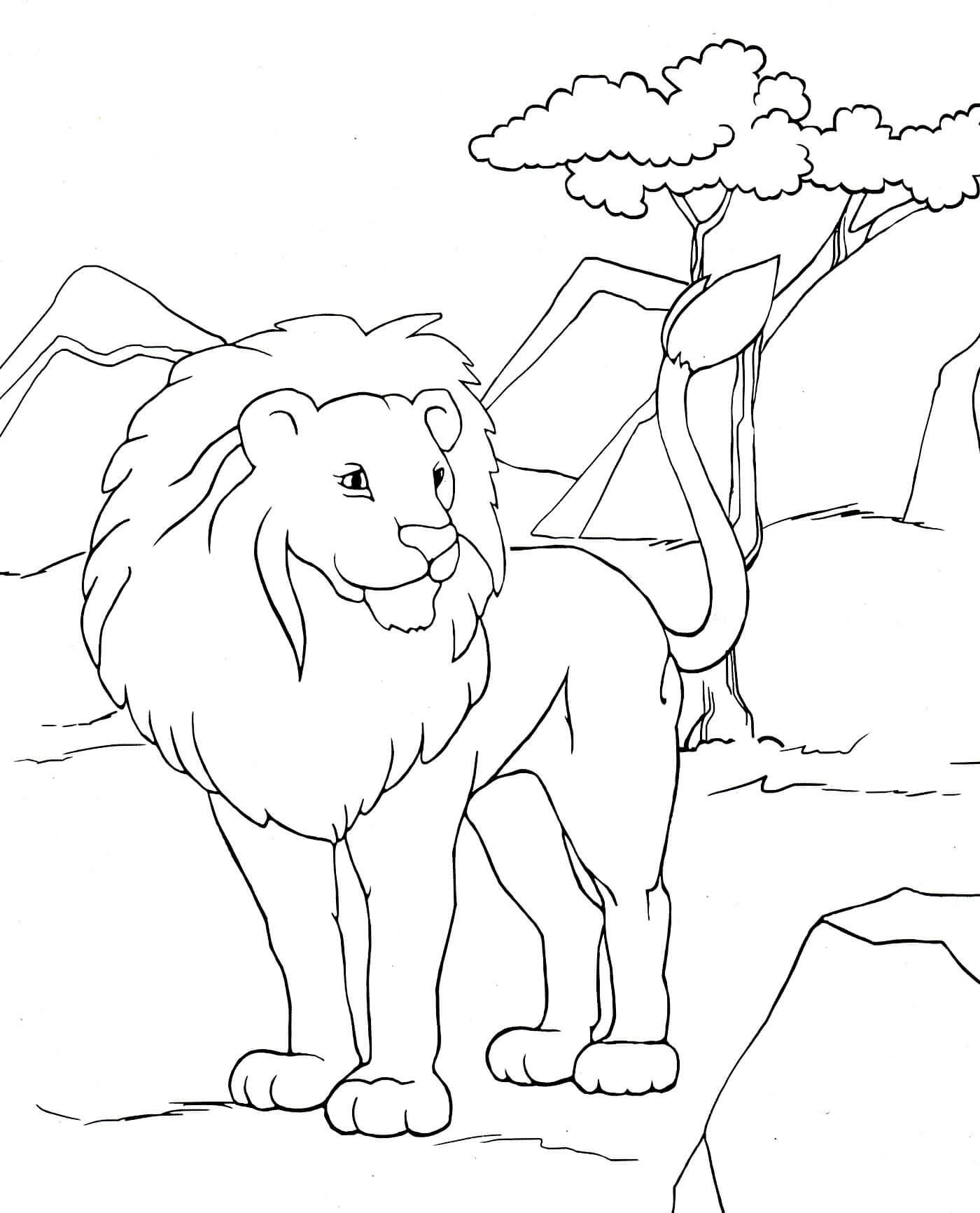 Раскраска Красивый лев