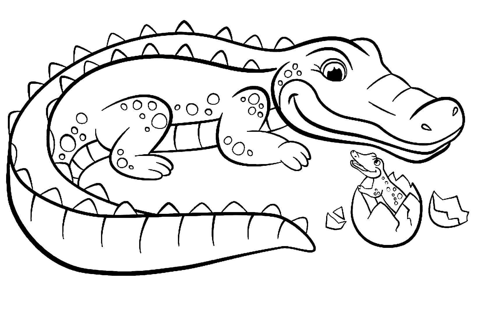 Раскраска Крокодилица с детёнышем