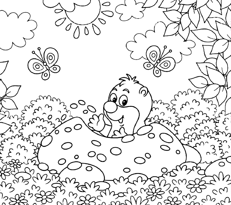 Раскраска Крот в лесу