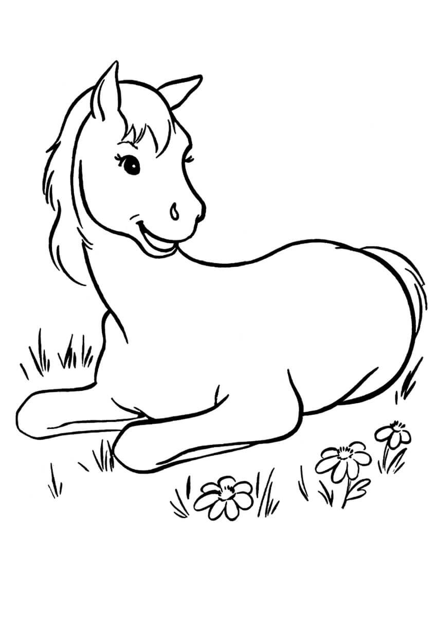 Раскраска Лошадка на лужайке