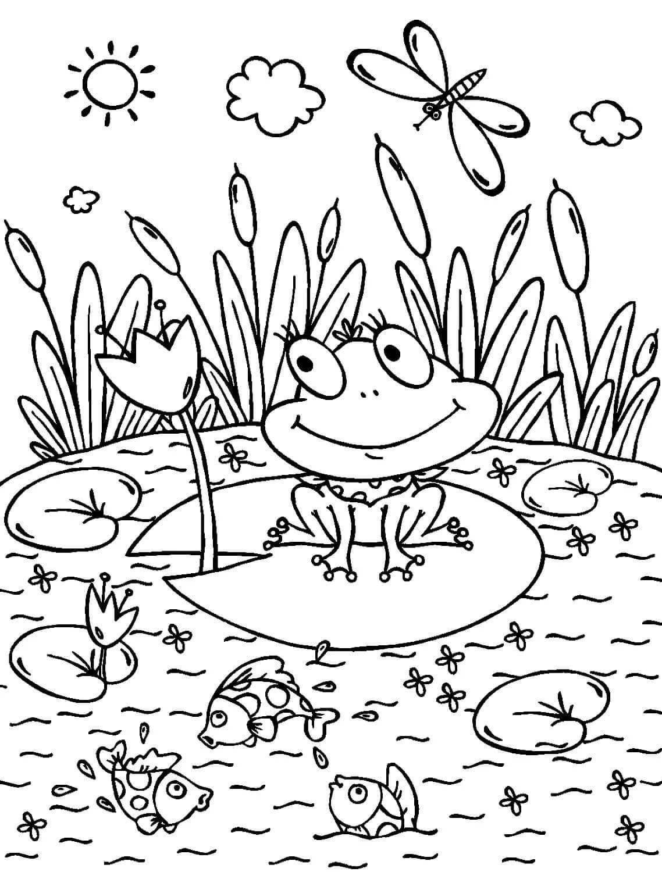 Раскраска «Лягушонок на кувшинке»
