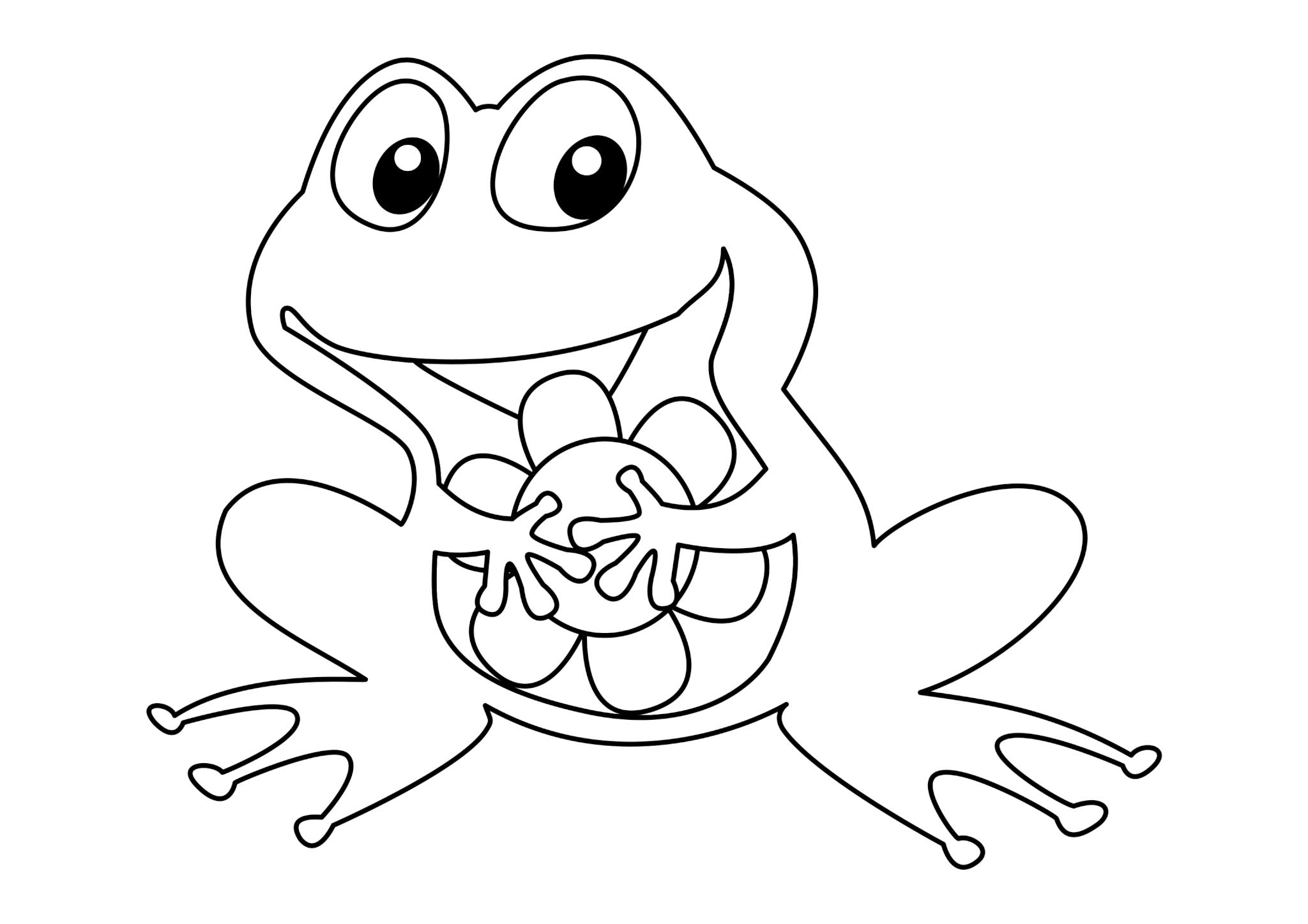 Раскраска Лягушонок с цветком