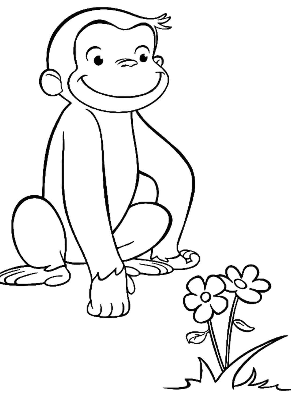 Раскраска Обезьянка и цветочки