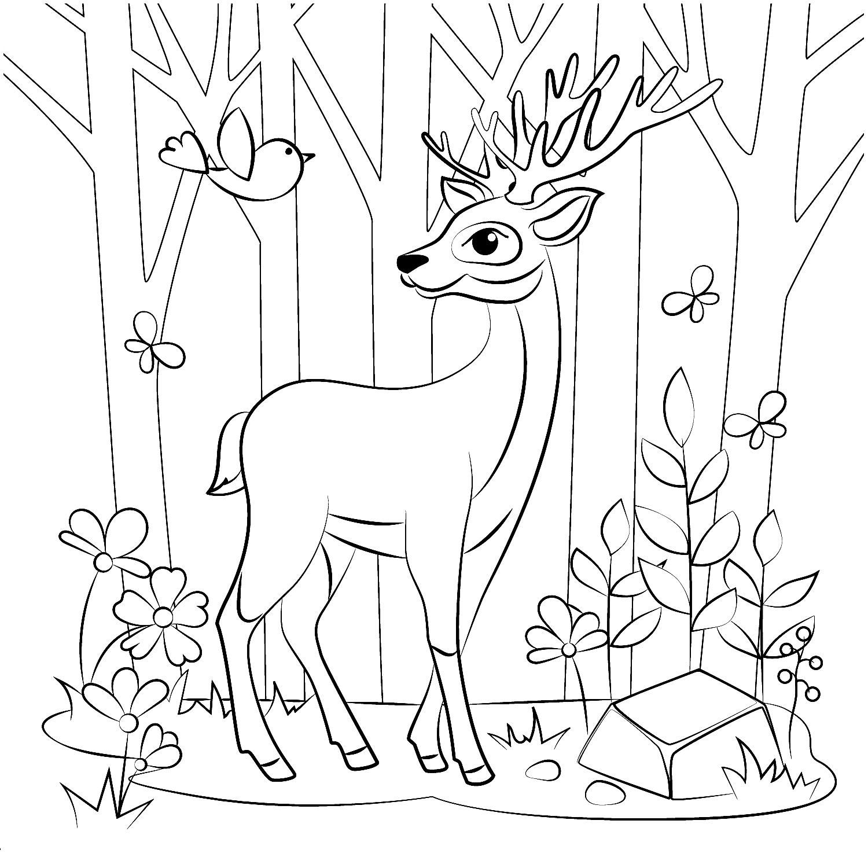 Раскраска Олень в лесу