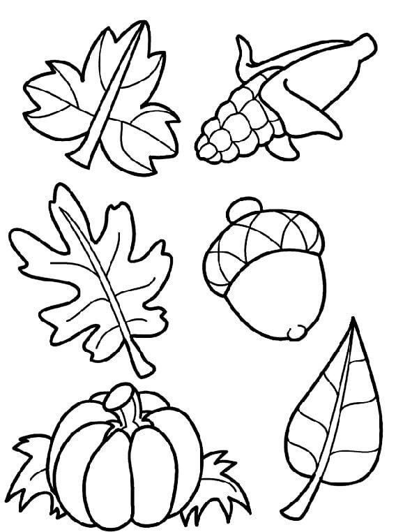 Раскраска Осенний урожай