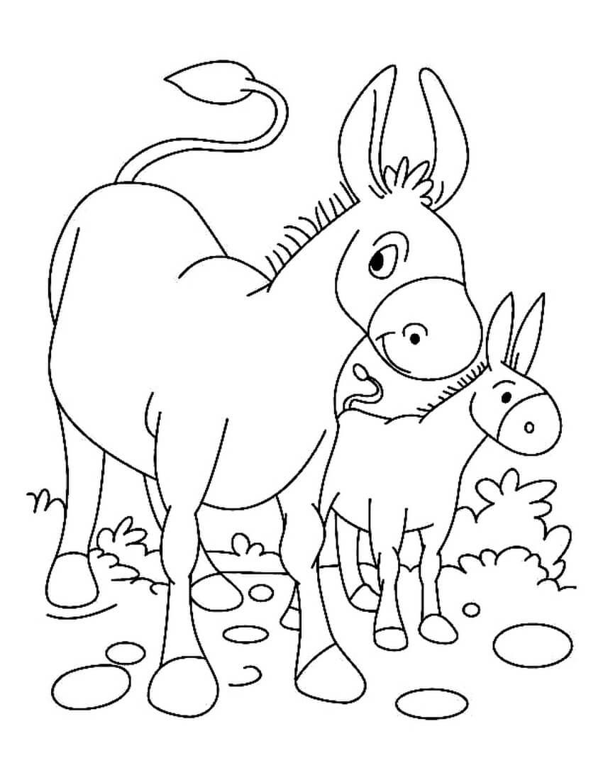 Раскраска Ослиха с детёнышем