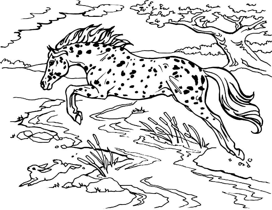 Раскраска Пятнистая лошадка в прыжке