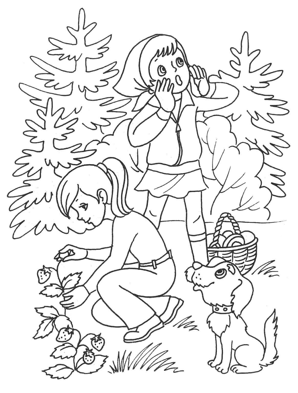 Раскраска Сбор ягод в лесу