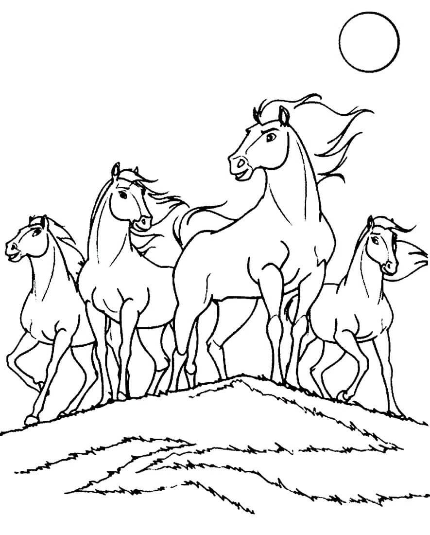 Раскраска Табун лошадей