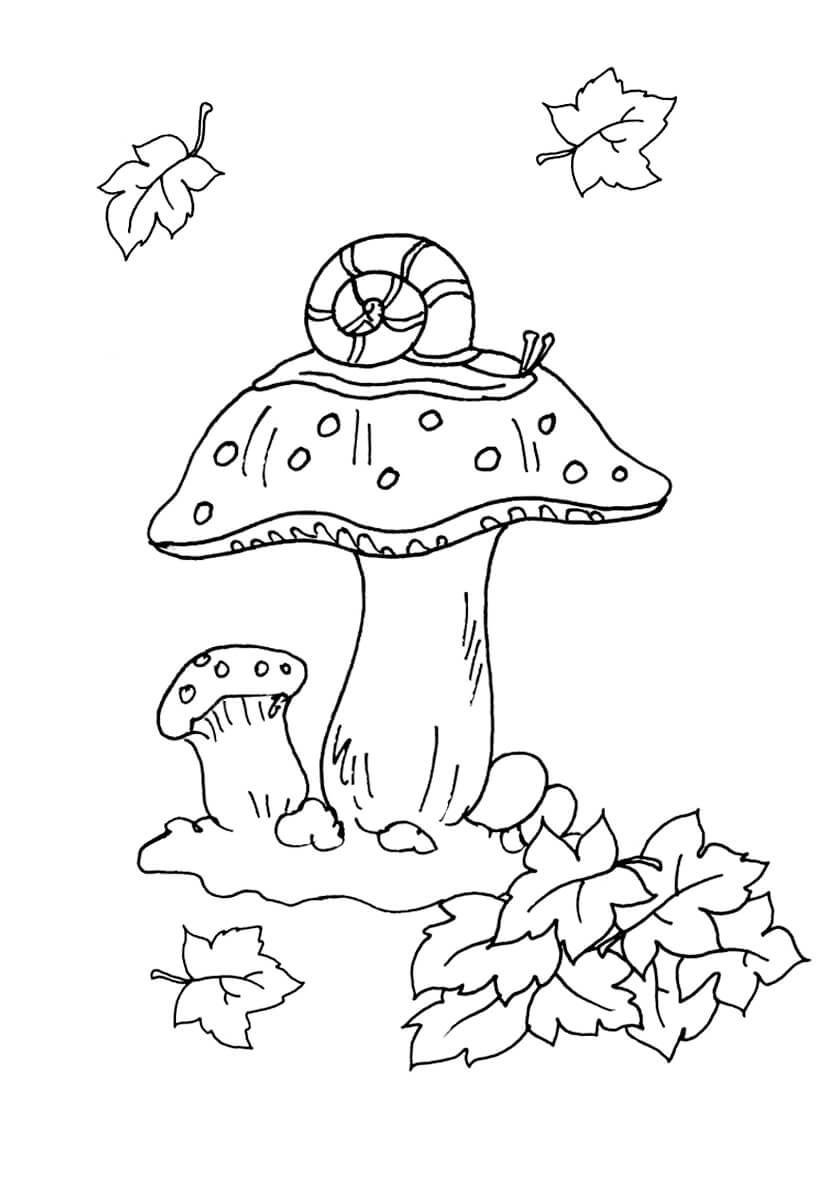 Раскраска Улитка и грибочки