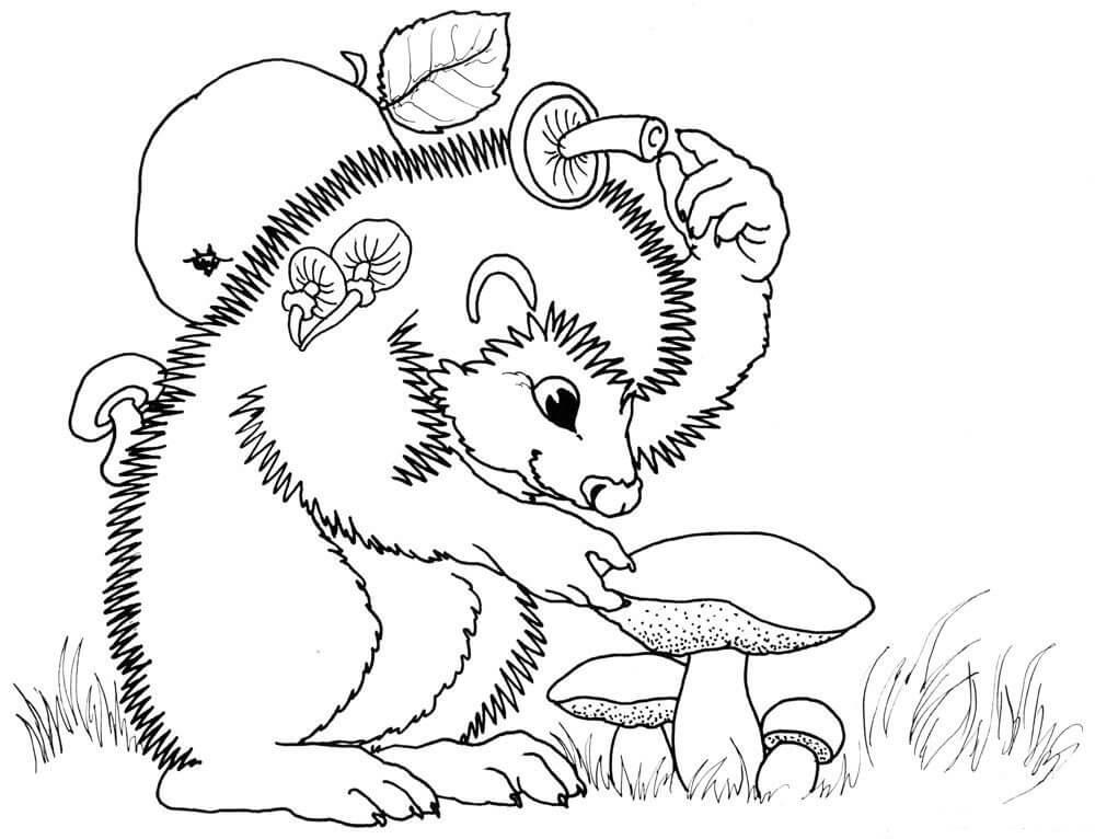 Раскраска Ёжик собирает грибы