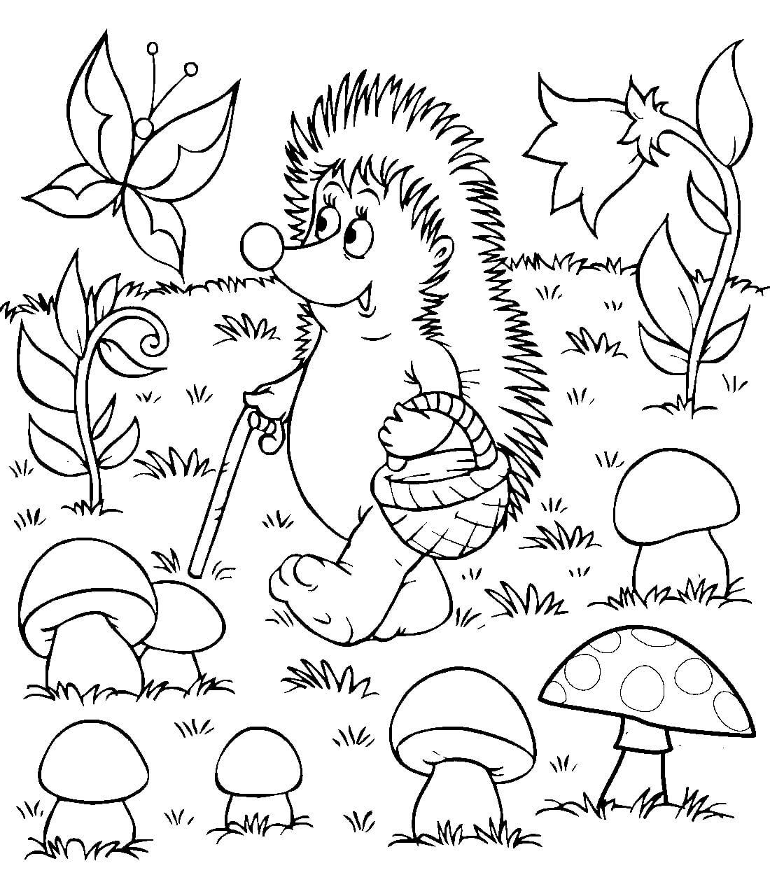Раскраска Ёжик в лесу