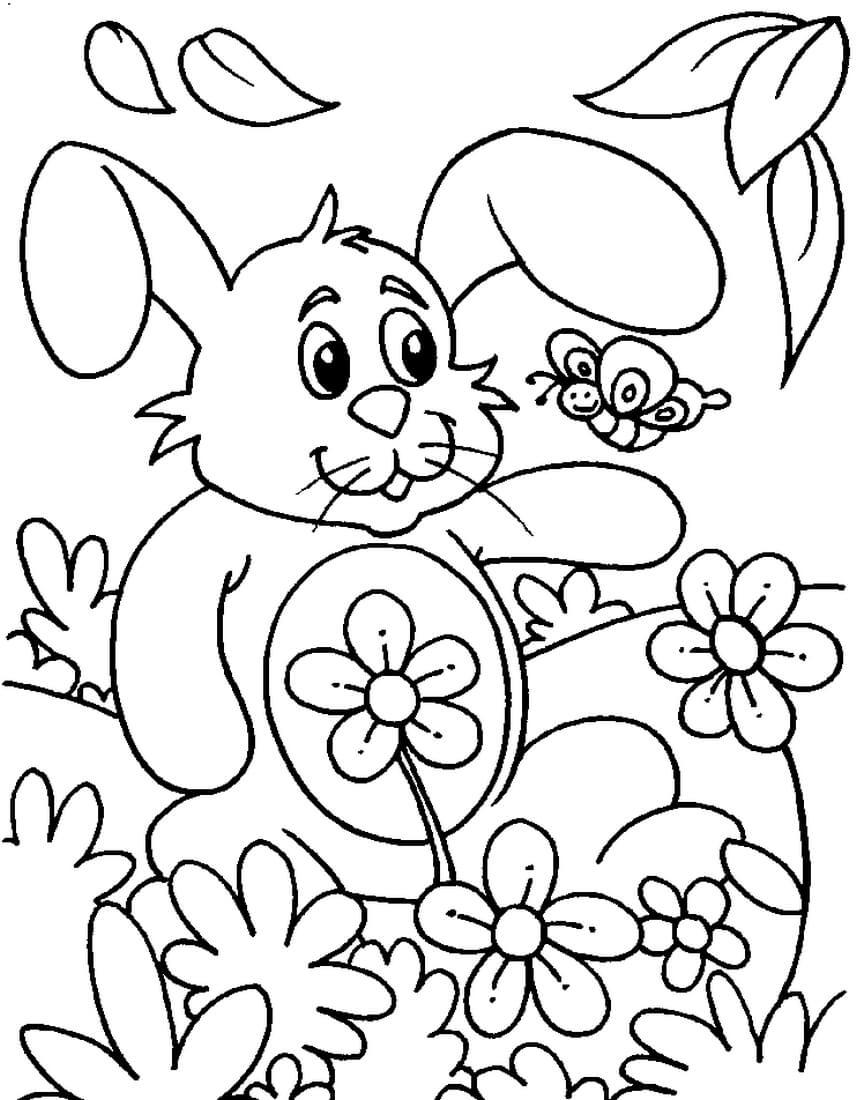 Раскраска Зайчик и бабочка