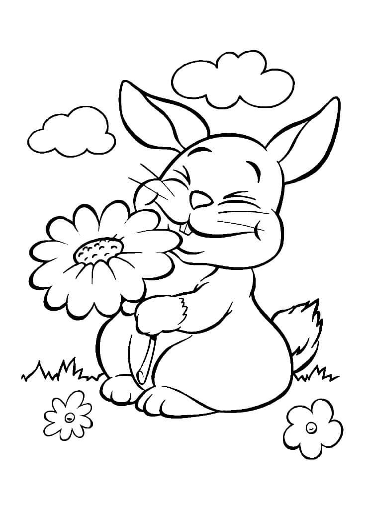 Раскраска Зайчик и цветочек