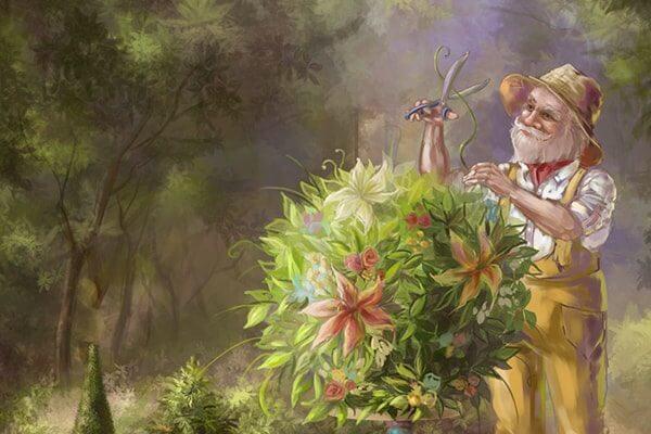 Наш сад (Рассказы старого садовника)
